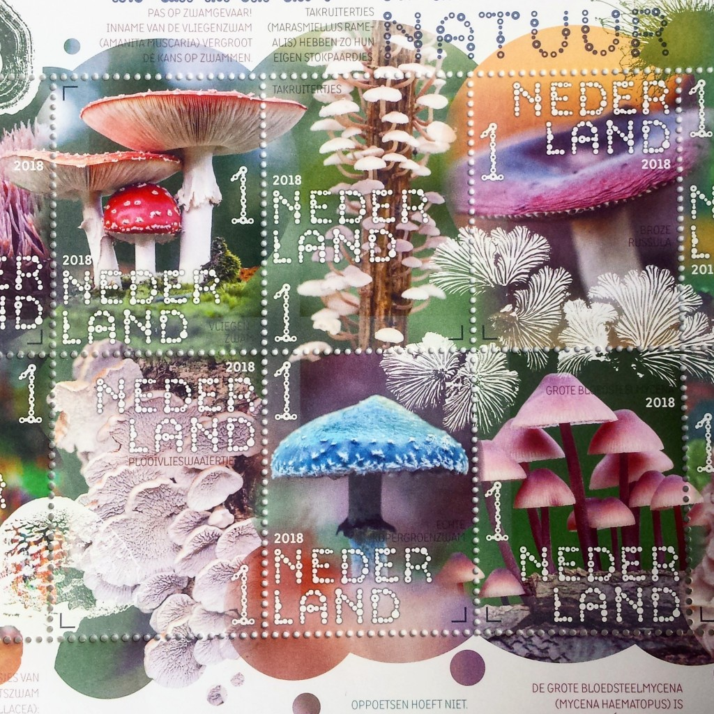 paddenstoelen postzegels